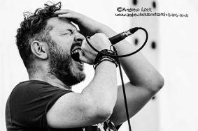 Rosetta Fire Leam Peace Fest - Andrew Lock 2